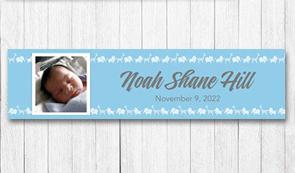 Shop Personalized Boy Birth Announcement 5 foot Banners