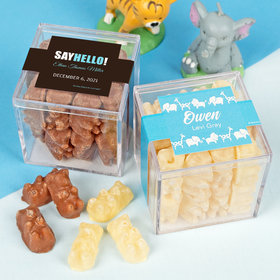 Personalized Boy Birth Announcement JUST CANDY® favor cube with Premium Chocolate Covered Gummy Bears