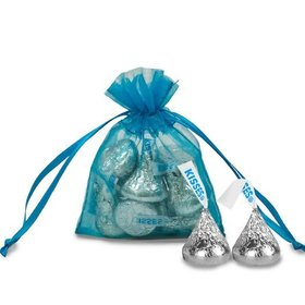 Extra Small Turquoise Organza Bag - Pack of 12
